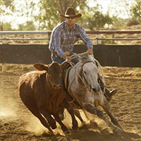 Moranbah Campdrafting Association